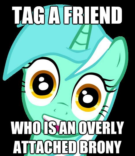 Know Your Meme Brony - overly attached brony my little pony friendship is