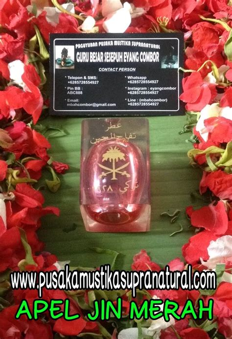 Minyak Mistik Apel Jin Merah apel jin merah daun 5 paranormal sakti indonesia