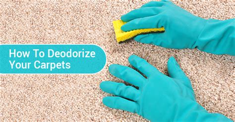 How To Deodorize A Rug by 4 Tips For Deodorizing Carpets Royal Building Cleaning Ltd
