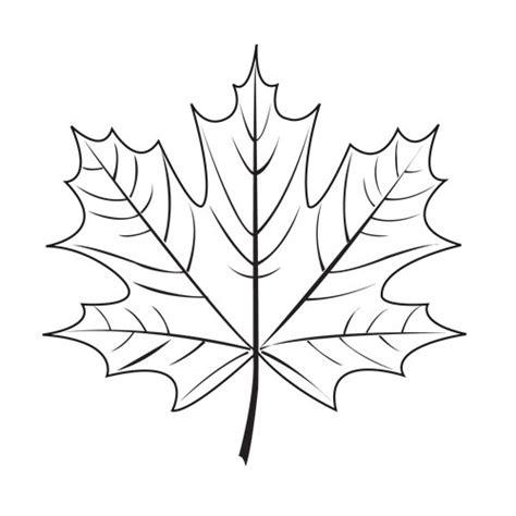 Maple Leaf The 3doodler 3d Pen Templates For Beginners