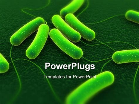 powerpoint themes bacteria 3d rendered close up of coli bacteria powerpoint template