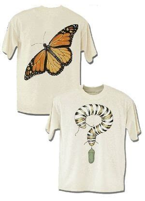Metamorfosis T Shirt 1 196 best images about monarchs and milkweed on