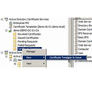 50 certificate template not supported by this ca professional active directory certificate services ad cs public key yelopaper Images