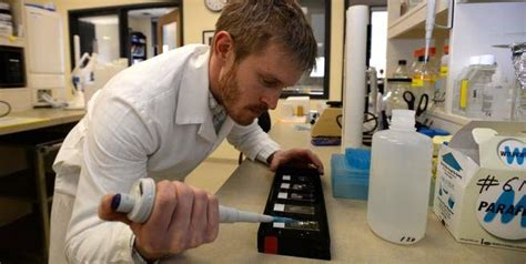 tattoo removal cream canada alec falkenham student invents tattoo removal cream