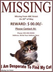 lost cat poster template missing cat poster word excel pdf