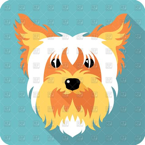 icon of yorkshire terrier in flat style vector image