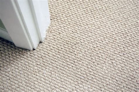 define rug low pile rug meaning rugs ideas