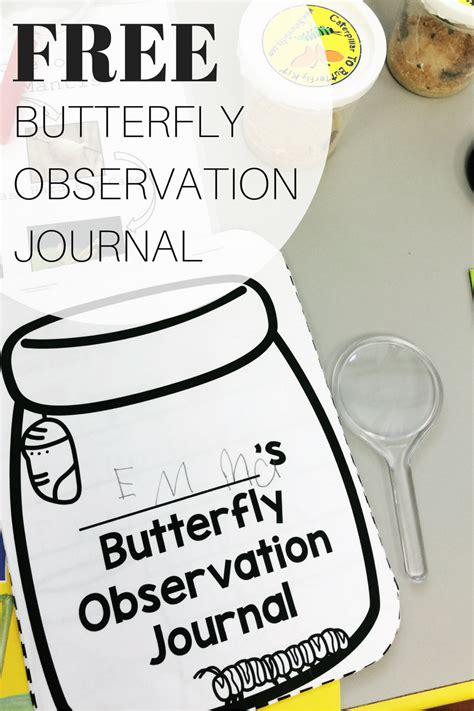 printable caterpillar observation journal butterfly observation journal freebie
