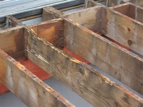 decke rot deck joist to beam connection deck design and ideas