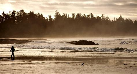 storm watching  tofino