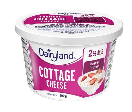 cottage cheese 2 dairyland 2 cottage cheese walmart canada