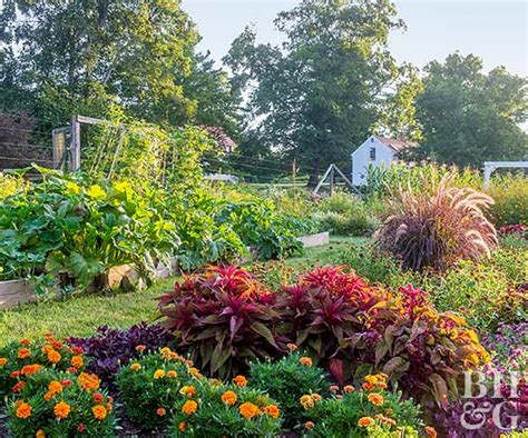 Vegetable Gardens That Look Great Backyard Vegetable Gardening Guide