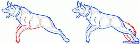 how to a guard how to draw a guard step by step pets animals free drawing tutorial