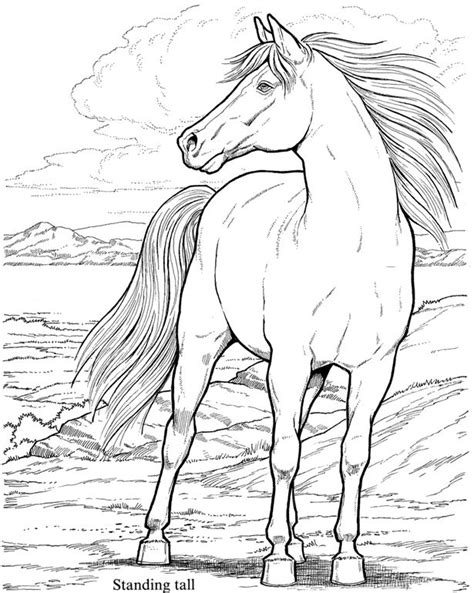 coloring pages of horses for adults dover coloring pages horses inkleurprente