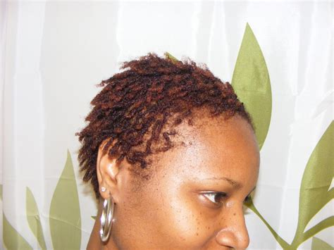 starting sisterlocks with short hair sisterlocks hairstyles beautiful hairstyles
