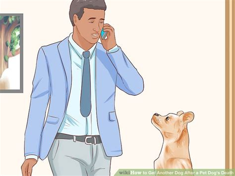 how to a puppy when you another how to get another after a pet s with pictures