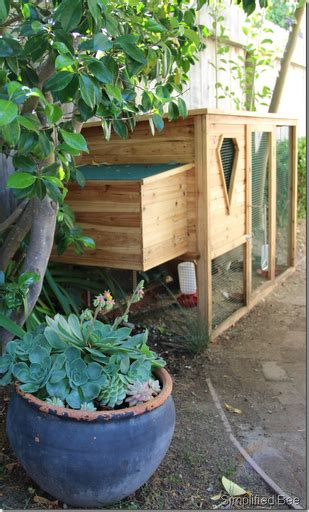 our backyard chicken coop simplified bee