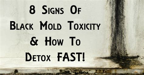 Black Mold Detox by Black Mold Exposure Is Toxic Here Is How To Detox