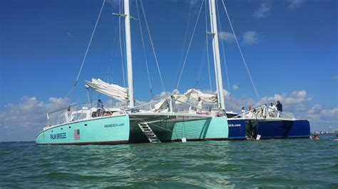 catamaran cruise deerfield beach fl air sea palm breeze catamaran cruises charters fl 33432