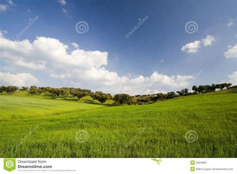landscape with blue sky stock photo image 2324990