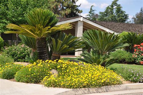 Palm Gardens by Sago Palm Garden