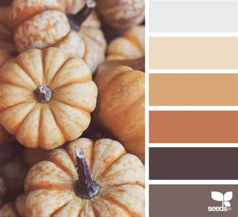 brown color combination best 25 brown color palettes ideas on brown