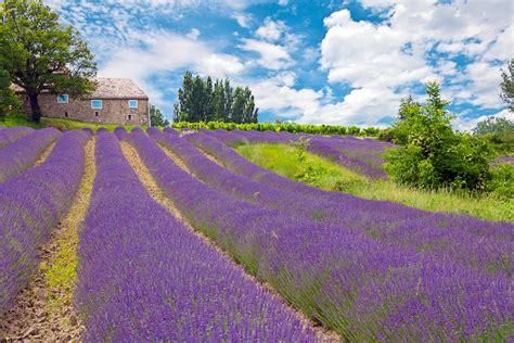 Cote De Sud by Location Maison Et Villa Vacances Provence Et Sud