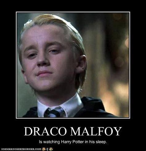 Draco Memes - welcome to memespp com