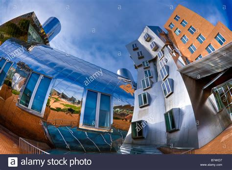frank gehry möbelkollektion stata center mit cus boston ma frank gehry designed