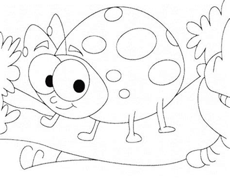 cute ladybug coloring page cute ladybug insect coloring pages kids coloring pages
