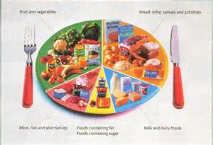 food wheel template view topic baby food wheel baby led weaning
