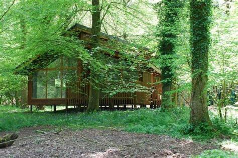delamere forest log cabins plan rejected by high court