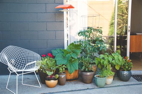 container gardening seattle more with less creating a productive vegetable garden in