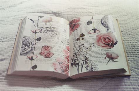 the roses books book quotes beautiful quotesgram