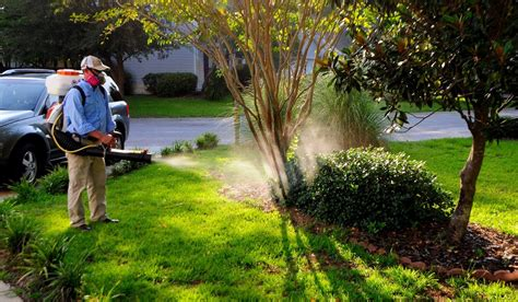 mosquito proof backyard 9 ways to mosquito proof your yard for summer drdrainage