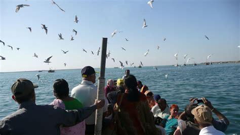 ferry boat gujarat one many ferry boats to bet dwarka island india travel