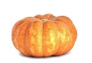 Pumpkin Foods Pumpkinpumpkin Isolated Object Single Objects Gourd