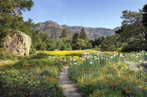 botanical garden santa barbara