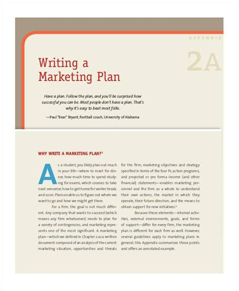 sle product plan template 12 free documents in pdf word
