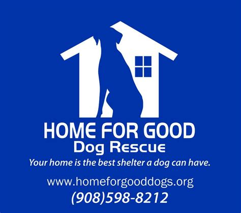 home for rescue pet friendly