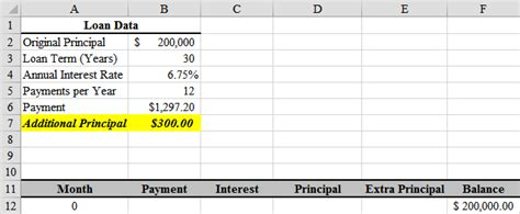 loan amortization with principal payments using