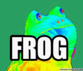 Frog Meme Generator - frog