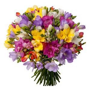 fleurs 233 es de saison septembre