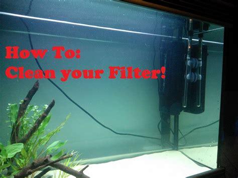 membuat filter aquarium sendiri tanpa kuras air selamanya susunan filter aquarium atas 1000 aquarium ideas
