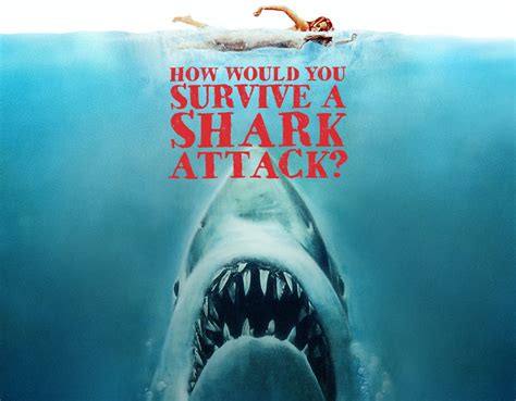 how to live a how would you survive a shark attack quiz zimbio