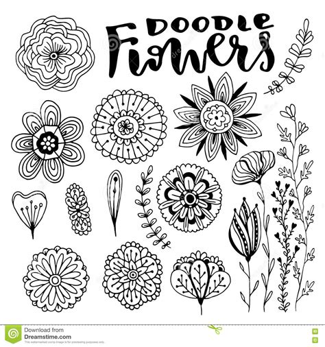 coloring book free vector flowers vector decorations set vector