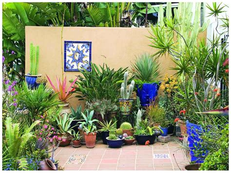 how to plant a container garden gardening landscaping succulent plant container garden