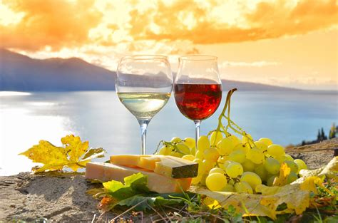 best food and wine pairings expert wine and food pairing basics winederlusting