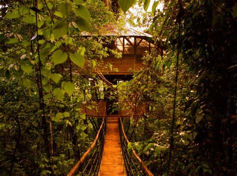 treehouse community finca bellavista a tree house community costa rica