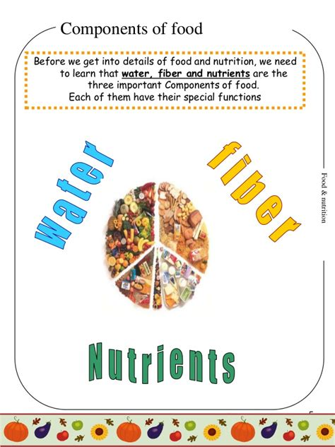 carbohydrates 4th grade food nutrition project for 4th graders